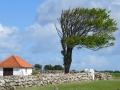 En bid af nordjylland 2